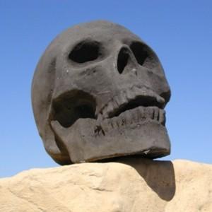 Bermuda Black Skull (9.5″x9.5″x3.5″)