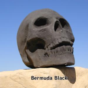 Bermuda Black