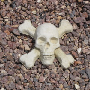 Skull & Crossbones Palm Beach (9.5″x9.5″3.5″)